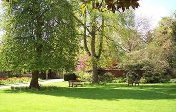 Gardens at Rhodes House